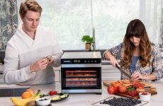 4 Best Food Dehydrator For Home Use