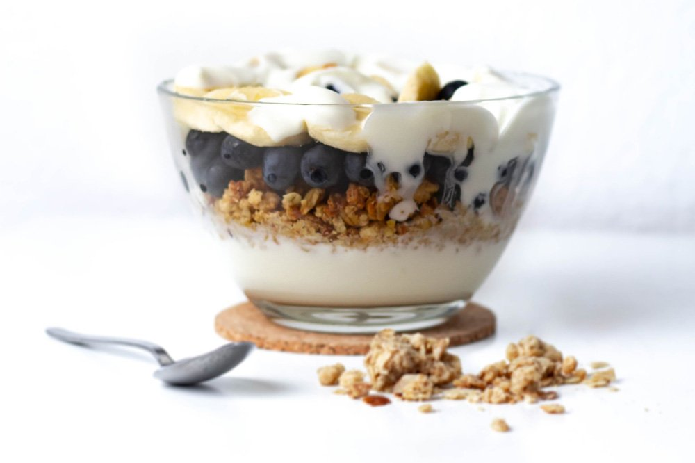 Yogurt Blender Recipe